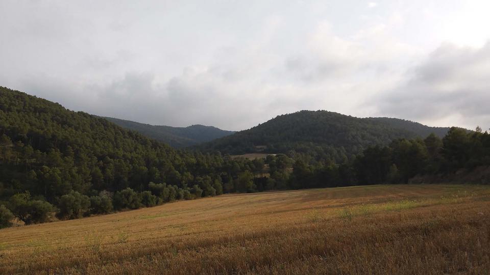 Els boscos predominen