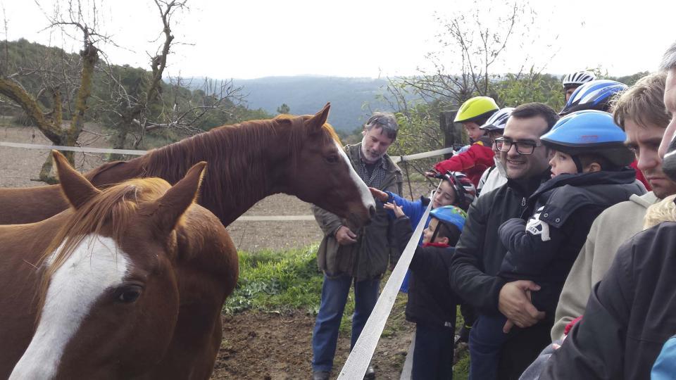 14.12.2014 Visita als cavalls de cal Sebastià  Argençola -  Jaume Teixé