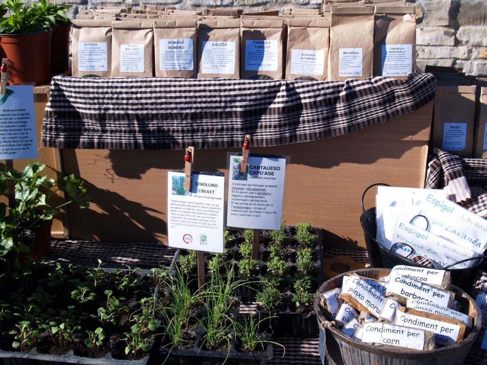 02.03.2014 Parada de planters i llavors  Argençola -  El Trill