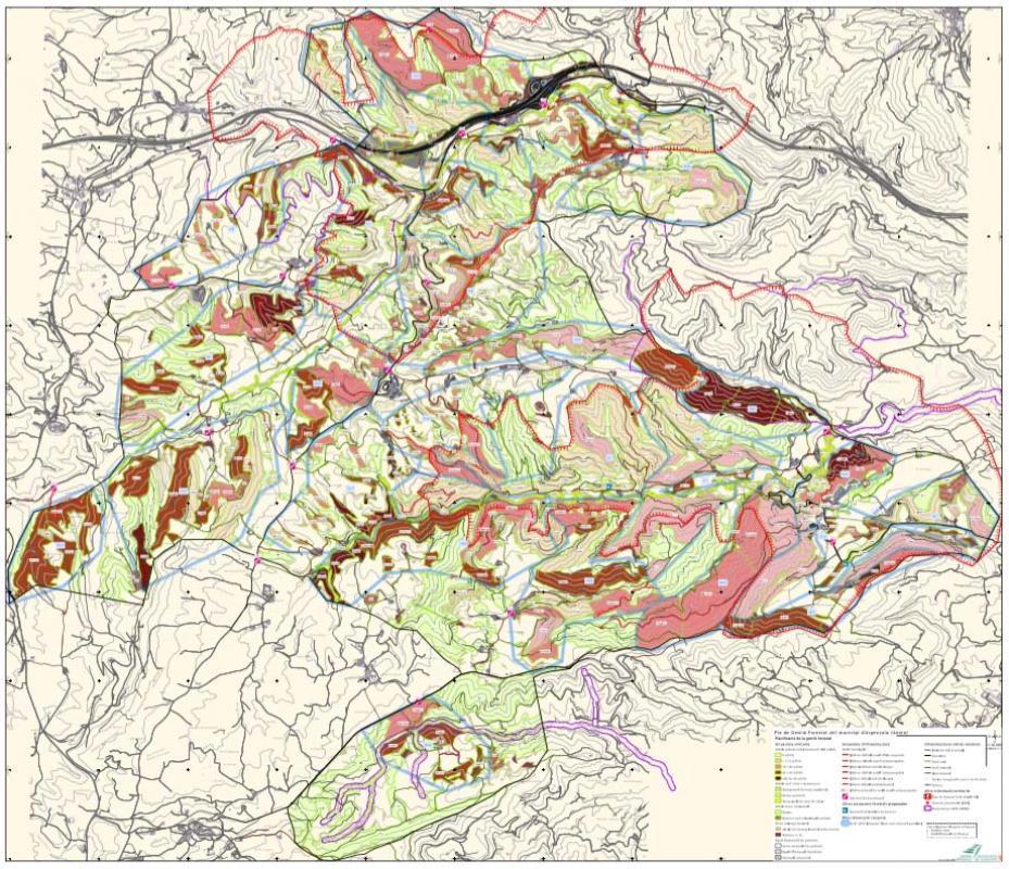 Pla de gestió forestal del municipi d'Argençola  actuacions - Argençola
