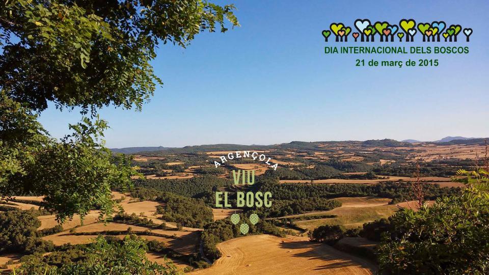 Dia Internacional dels Boscos 2015