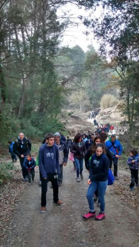 06.12.2015 camí del bosc  Clariana -  Toni Castillo