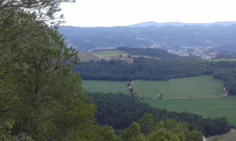 31.01.2016 paisatge de les obagues  Clariana -  Carme Monclus