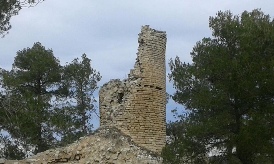 31.01.2016 Restes del Castell de Clariana  Clariana -  Carme Monclus
