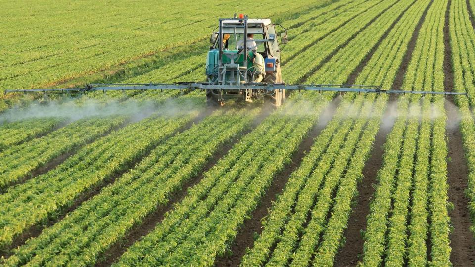 avanç en l'avaluació del risc acumulatiu dels pesticides