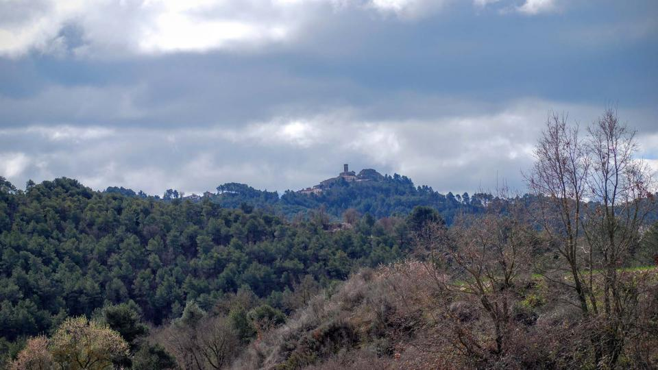 Els boscos ocupen dues terceres parts del terme d'Argençola
