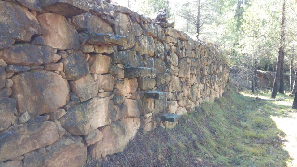 20.03.2016 Marge de pedra seca amb escala  Cal Caseta -  Martí Garrancho