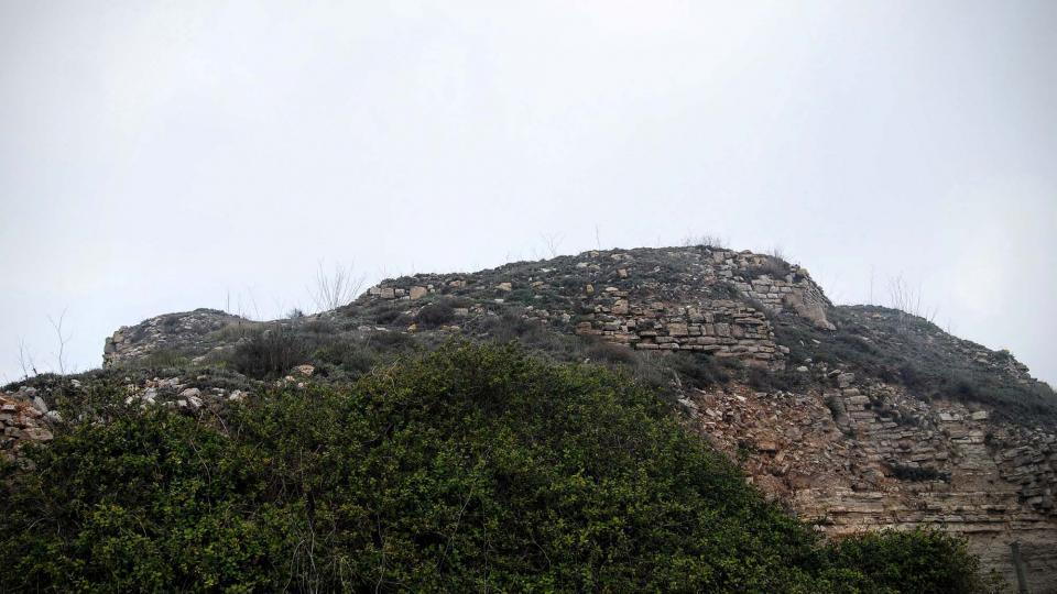 20.03.2016 restes del castell  Argençola -  Ramon Sunyer