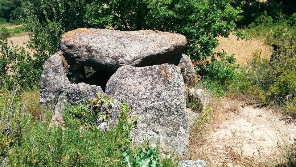 03.07.2016 sepulcre Megalític  Els Plans de Ferran -  Ramon  Sunyer