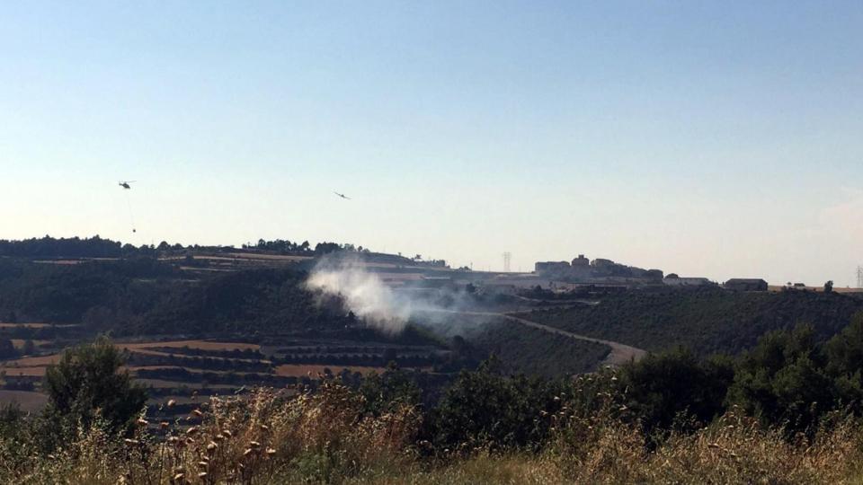 Dotacions aèries van participar en l'extinció de l'incendi de Carbasí