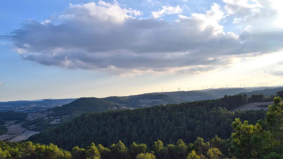 15.10.2016 paisatge de Rocamora  Carbasí -  Ramon  Sunyer