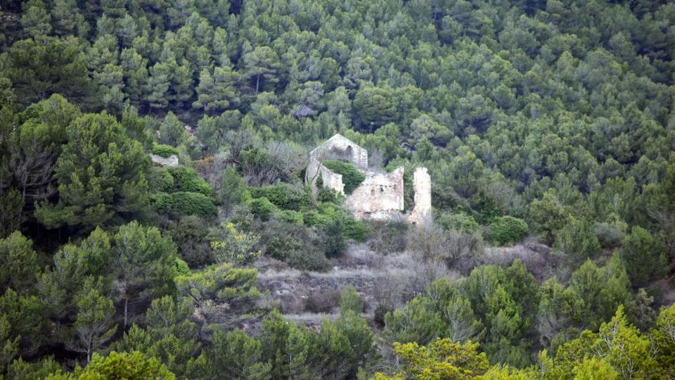 06.11.2016 Sant Pere de la Goda  248 - Auteur Ramon Sunyer