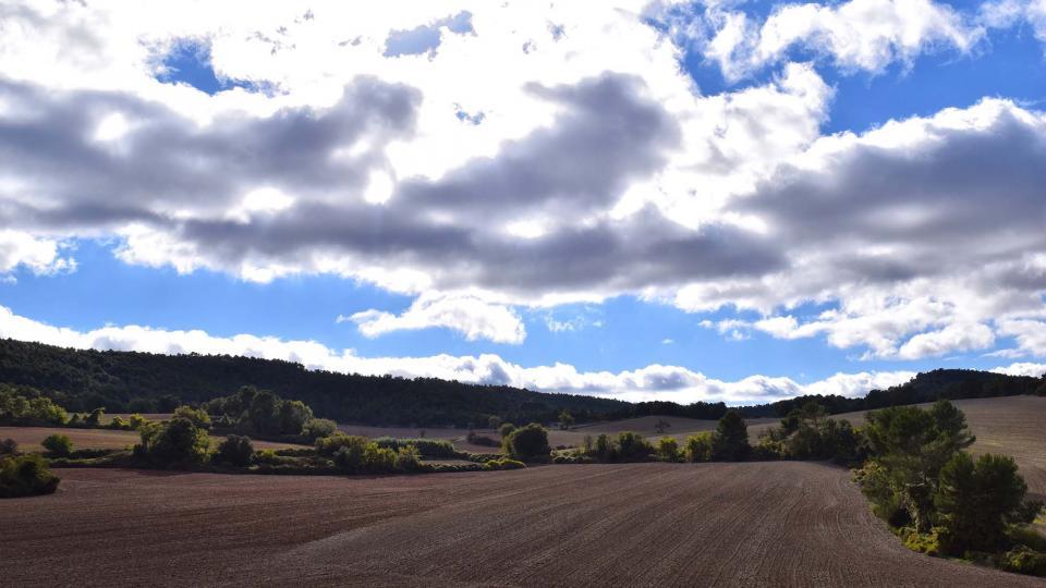 06.11.2016 paisatge de tardor  La Goda -  Ramon Sunyer