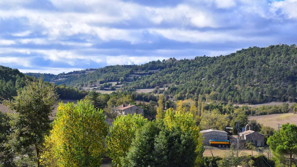 06.11.2016 paisatge de tardor  Rocamora -  Ramon Sunyer