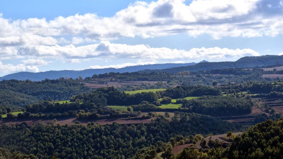 06.11.2016 paisatge de tardor  Argençola -  Ramon Sunyer