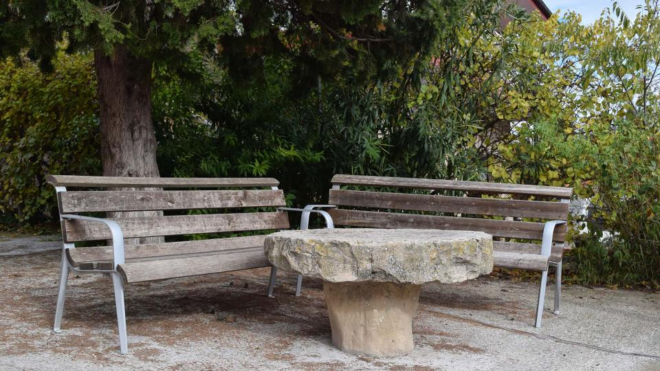 20.11.2016 detall plaça  Clariana -  Ramon Sunyer