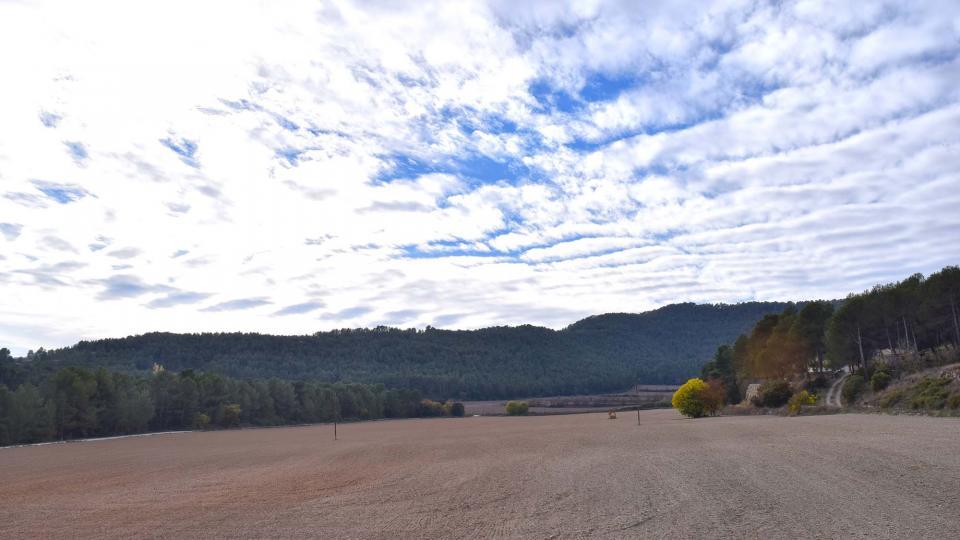 20.11.2016 paisatge a mas Biosca  Clariana -  Ramon Sunyer