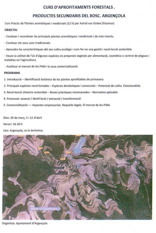 Curs Pràctic de Plantes aromàtiques i medicinals II - Argençola