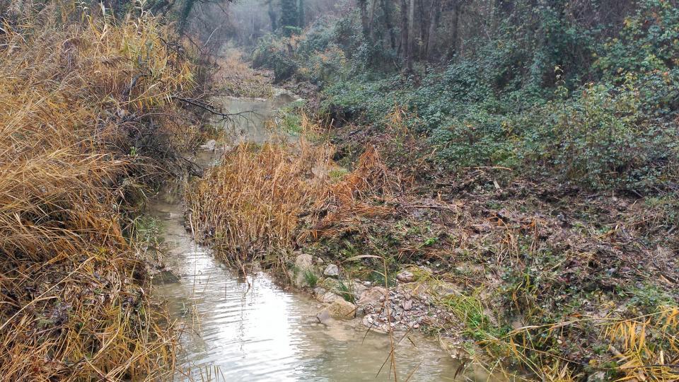 L'ACA desbrossa un tram de set quilòmetres de la riera de Clariana - Clariana