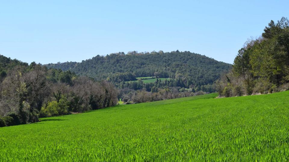 10.04.2017 Paisatge  Rocamora -  Ramon Sunyer