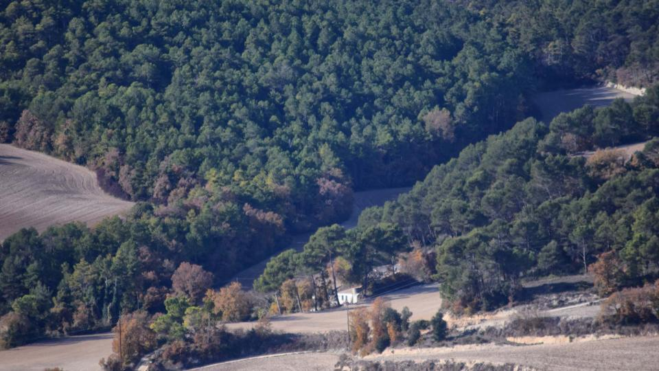 27.11.2017 paisatge de tardor  Rocamora -  Ramon  Sunyer