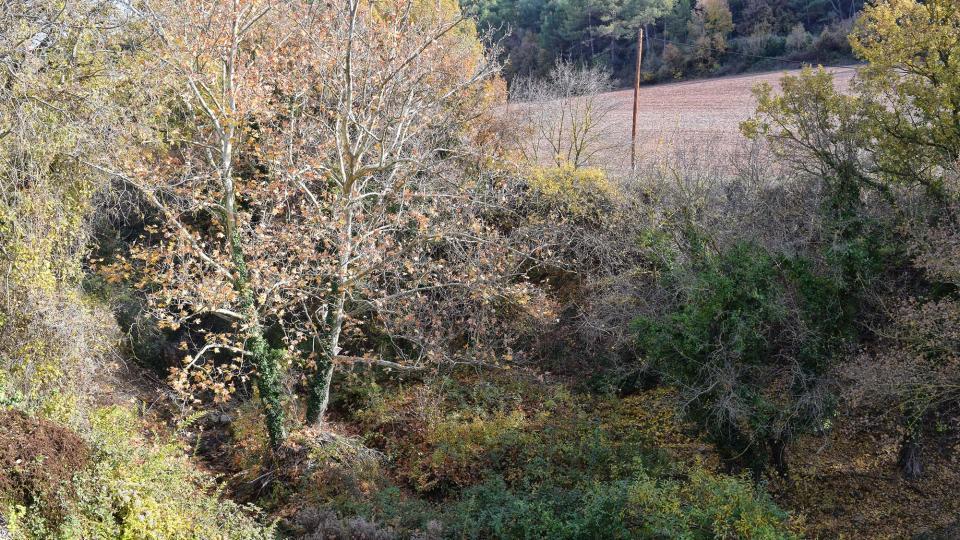 27.11.2017 paisatge  Porquerisses -  Ramon  Sunyer