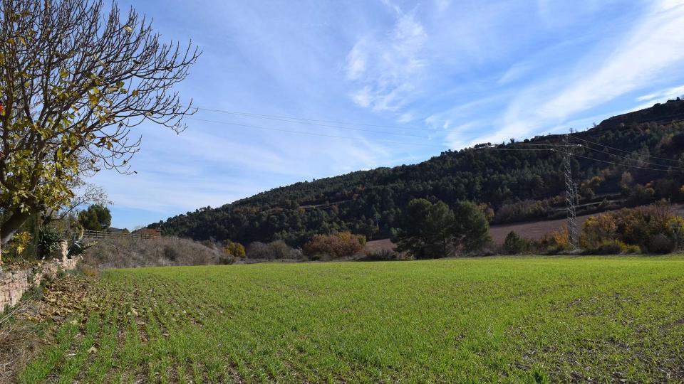 27.11.2017 paisatge  Santa Maria del Camí -  Ramon  Sunyer