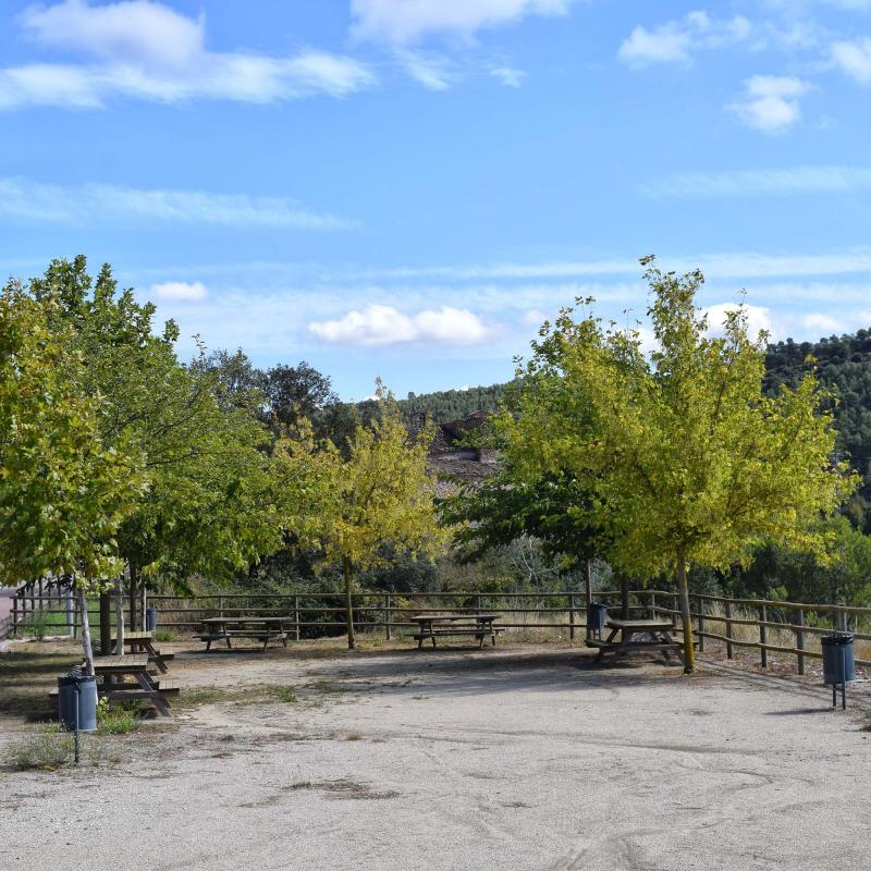 16.09.2017 parc  Santa Maria del Camí -  Ramon Sunyer