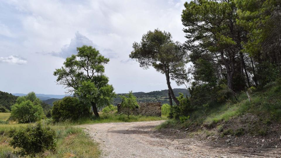 10.06.2018 paisatge  Porquerisses -  Ramon Sunyer