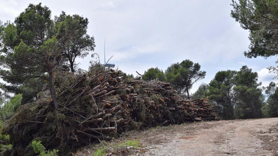 10.06.2018 aprofitament forestal  Porquerisses -  Ramon Sunyer