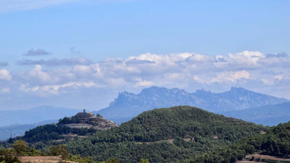 El cicle de caminades 'Xino-Xano' una forma de descobrir els boscos d'Argençola - Argençola