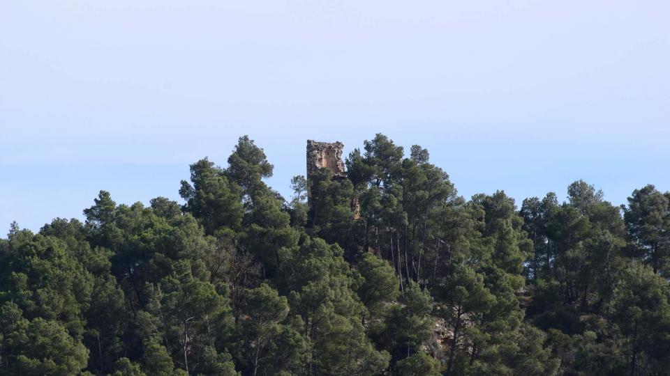 03.03.2019 torre  Clariana -  Ramon Sunyer