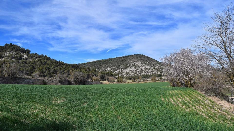 03.03.2019 paisatge  Clariana -  Ramon Sunyer