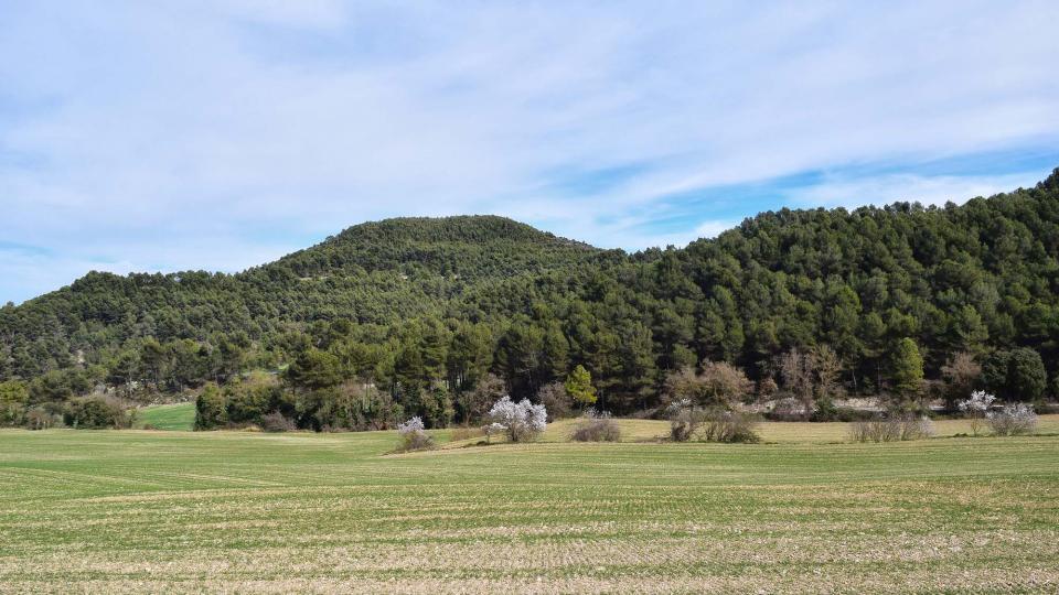 03.03.2019 paisatge  Argençola -  Ramon Sunyer
