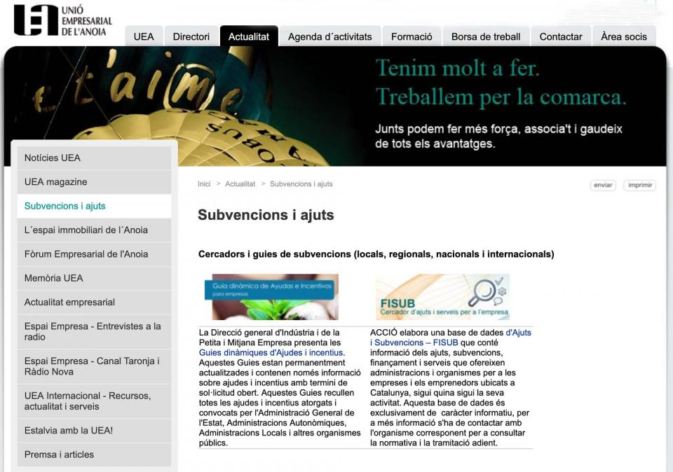 UEA Informació de subvencions i ajuts