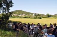 Rocamora: Sortida reconeixement plantes  Fitomón