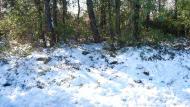 Carbasí: restes de neu als obacs  Ramon Sunyer