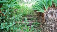 Albarells: cementiri  Ramon Sunyer