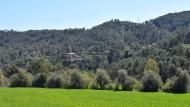 Clariana: boscos  Ramon Sunyer
