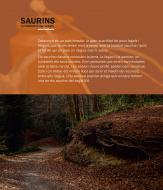 Argençola: Exposició Saurins: la percepció del subsòl  Ajuntament d'Argençola