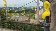 Argençola: Els llaços grocs ben presents a l'entorn de l'acte  Martí Garrancho