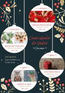 Casal Infantil de Nadal a Clariana